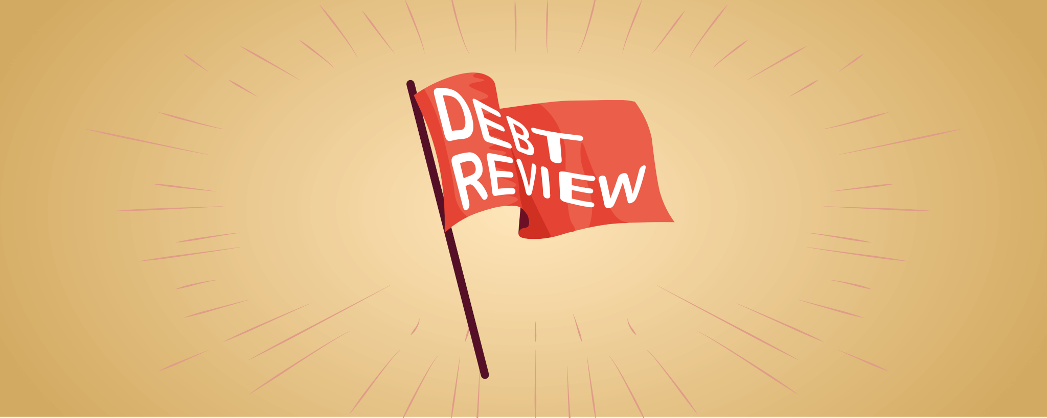 Debt review flag